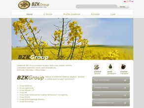 BZK Group